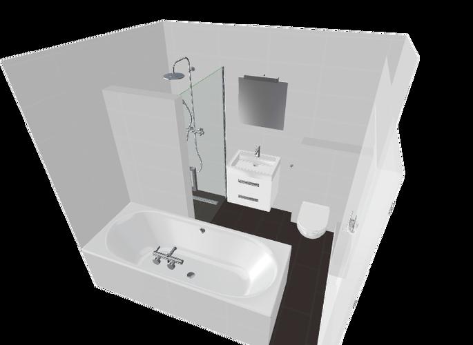 Renovatie badkamer en toilet en evt. washok werkspot