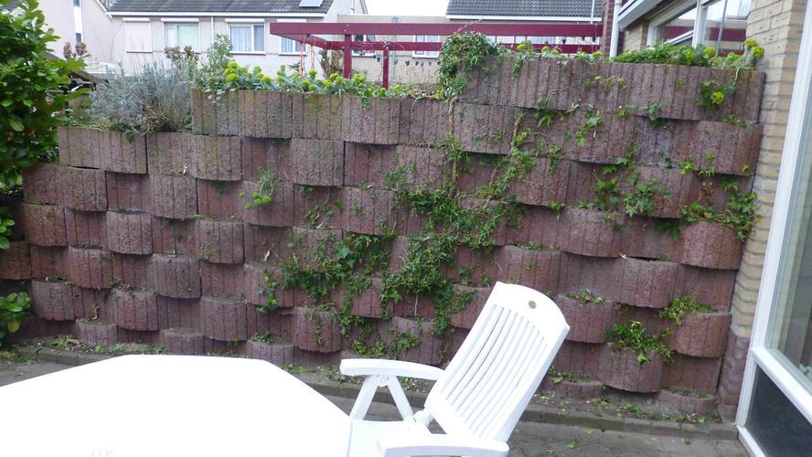 Bakstenen Muur Tuin : Tuin muur stenen: je lelijke tuinmuur camoufleren prachtige