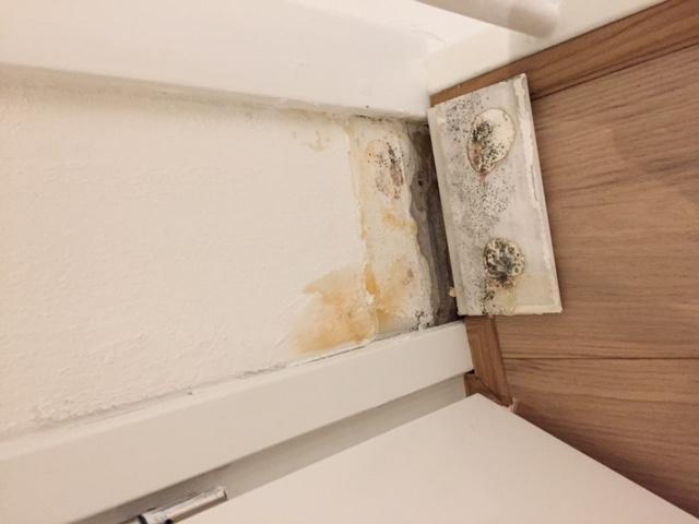 Lekkage Badkamer Opsporen : Lekkage douche badkamer opsporen verhelpen en radiatorkranen
