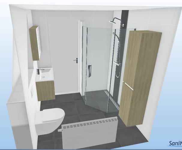 badkamer en toilet renovatie werkspot
