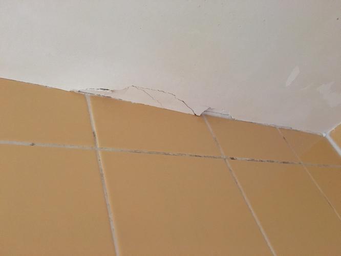 Badkamer: douche ontschimmelen, opnieuw kitten en plafond herstellen ...