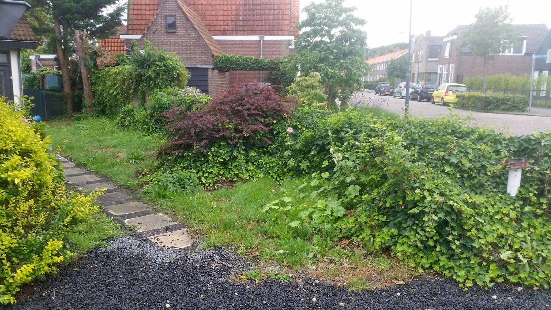 Opknappen tuin verwijderen beplanting werkspot