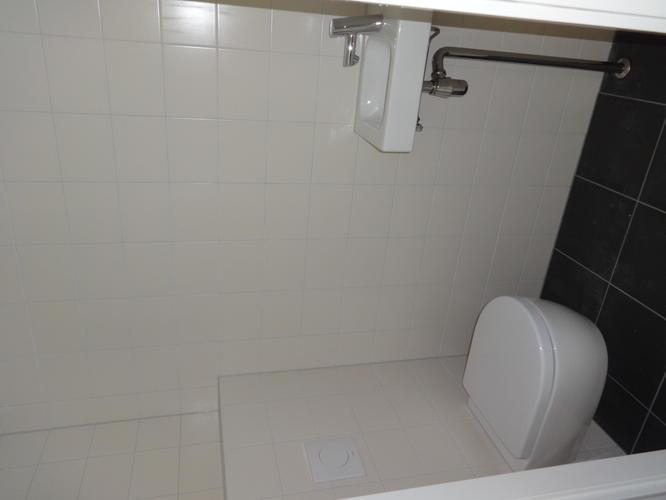 Betegelen badkamer en twee toiletten, tegels verwijderen en stucen ...