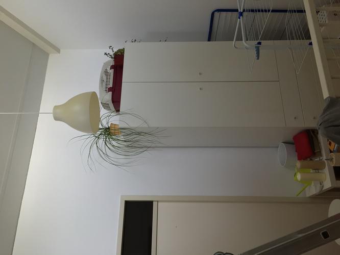 Plaatsen van stevig plafond voor cre ren vliering en for Vlizotrap plaatsen