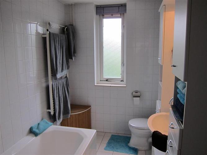 Badkamer raam vervangen door matglas - Werkspot