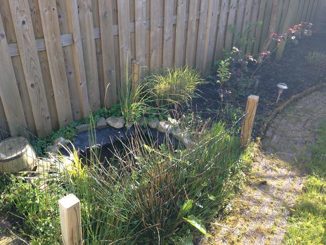 Aanleggen kleine natuurlijke vijver incl pomp en kleine for Waterval vijver aanleggen