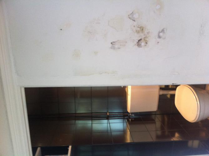 Afzuiging Vocht Badkamer : Verhelpen vocht duur muren badkamer aanleggen afzuiging werkspot