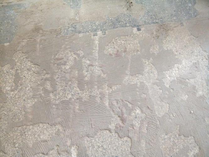 Bekend tegellijm verwijderen en terrazzo vloer opschuren en polijsten YI28