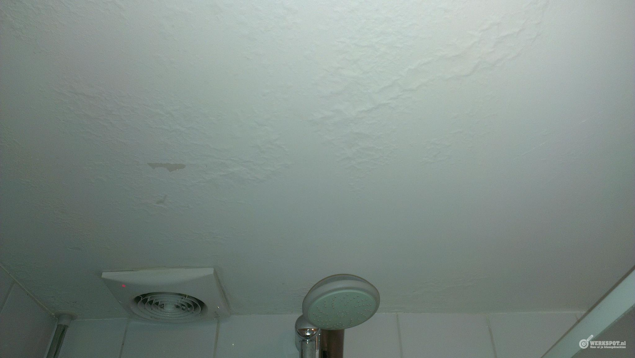Verf plafond douche blaast - Werkspot