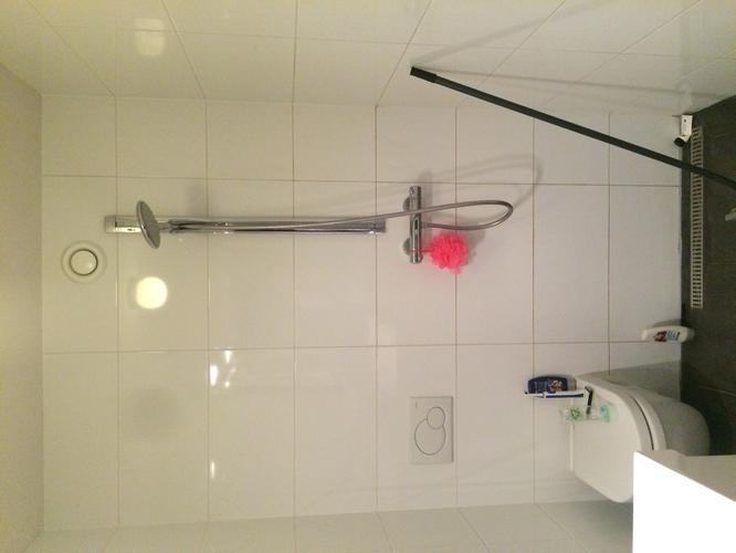 Verhelpen lekkage badkamer naar plafond woonkamer / slopen oude wan ...