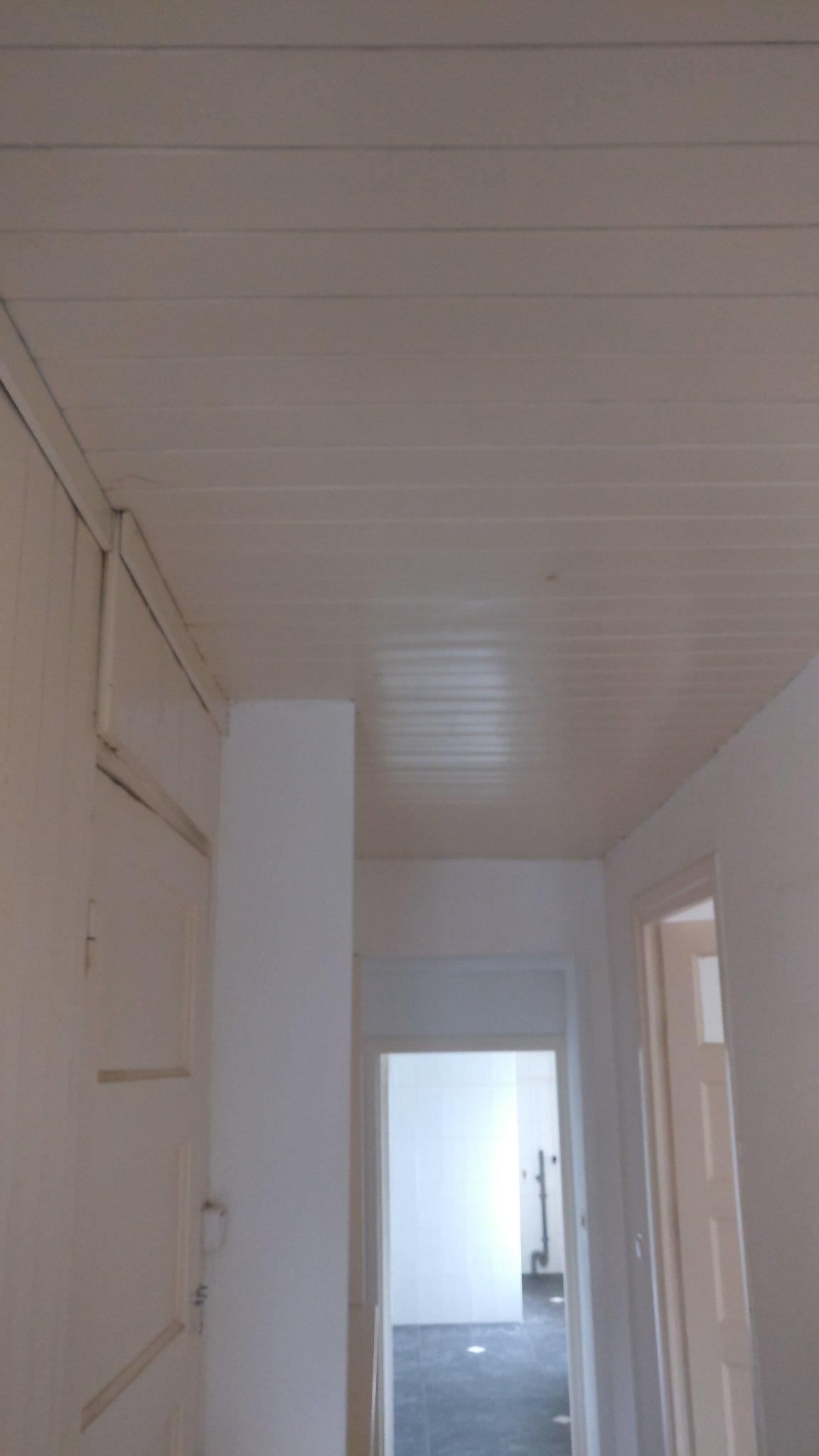 kosten gipsplaten plafond plaatsen