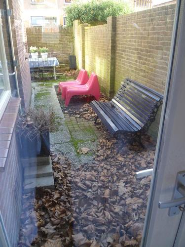 tuin pimpen werkspot
