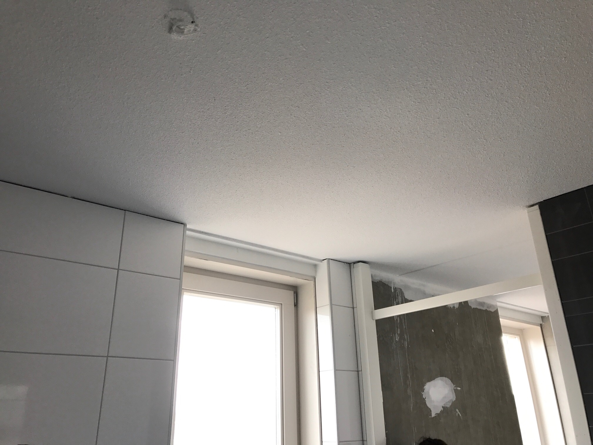 aanbrengen verlaagd plafond badkamer incl spots werkspot
