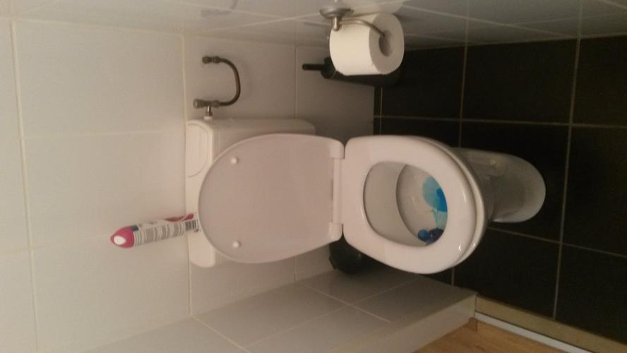 Toilet vervangen en bidet installeren in plaats van wastafel