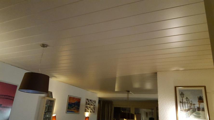 Plafond woonkamer vervangen en stucen - Werkspot