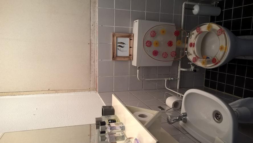 Achterwand Hangend Toilet : Toiletruimte opknappen verkoopklaar maken werkspot