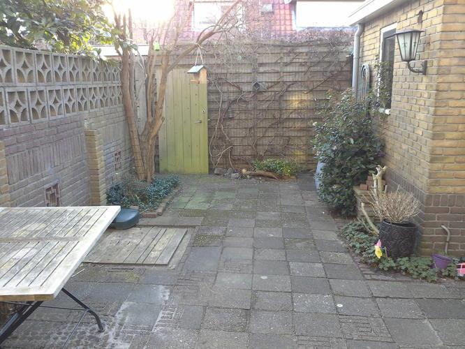 Tuinontwerp en advies voor kleine tuin werkspot for Tuinontwerper gezocht