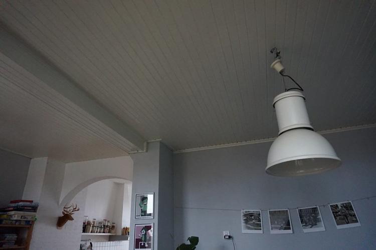 Badkamer Plafond Afzuiging : Verwijderen plafond schimmel plafond badkamer op in en schimmel