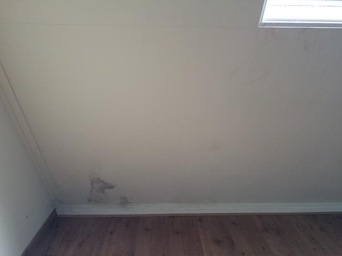 Schimmel verwijderen, plamuren en schilderen (kozijnen, wand & plaf ...