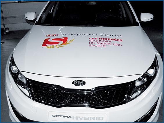 grafica prespaziata vettura ufficiale