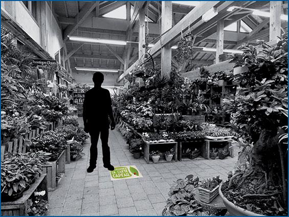 Adhésifs de sol pour jardinerie