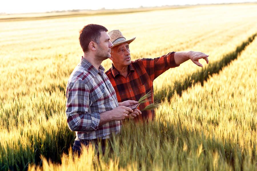 Gdzie rolnik może otrzymać pożyczkę?