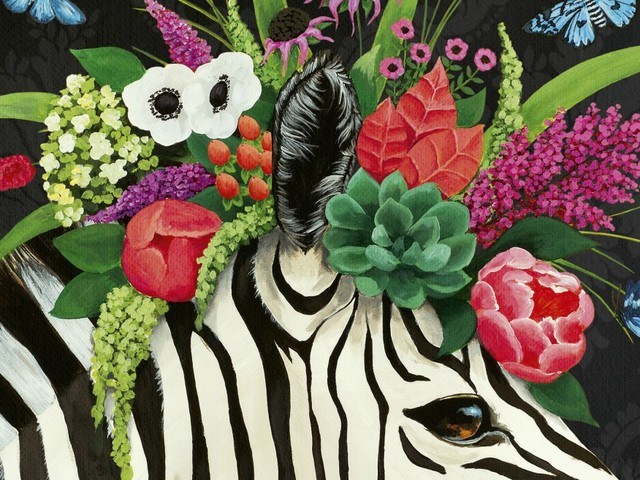 The hurt we live among: reading Zebra and other stories