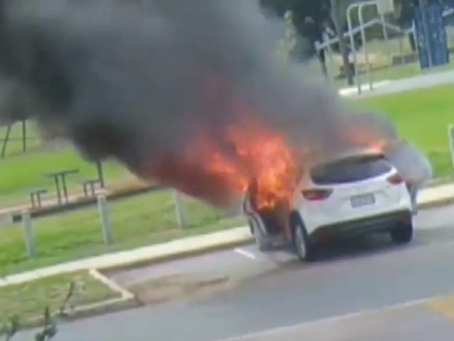Consumer watchdog investigating Canberra car fire caused from battery pack