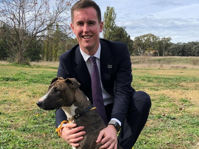 Owners face new fines under ACT dog strategy