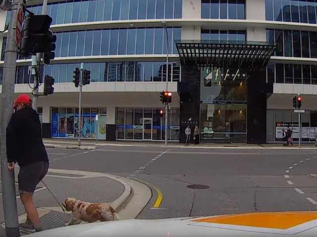 Pedestrian With Anger Management Issues Taught A Painful Lesson