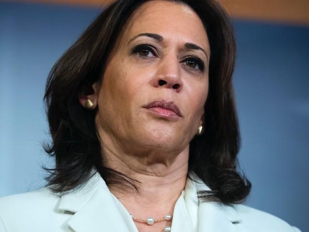 'Tenacious and trailblazing': Who is Joe Biden's vice-presidential pick Kamala Harris?