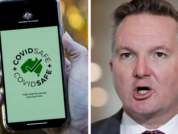 COVIDSafe app a '$2 million failure', Bowen says