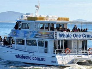 New, improved Whale One to be revealed ahead of peak season