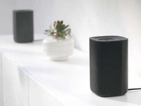 Roku Made Speakers?