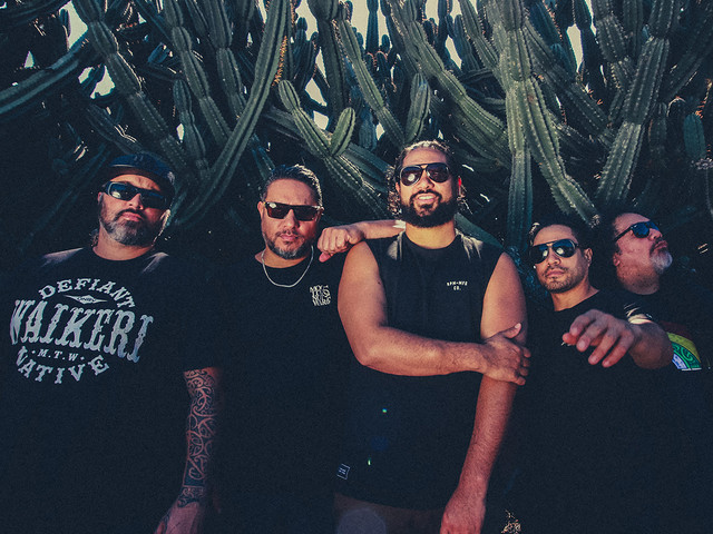 Katchafire are taking their music to the world
