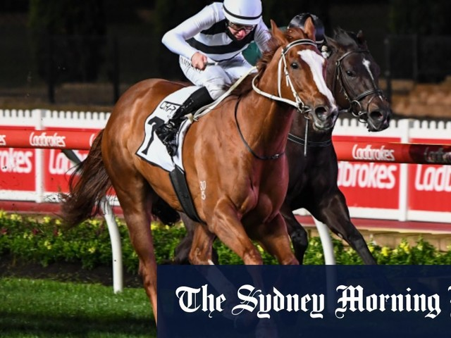 Speed machine Pippie wins Moir Stakes