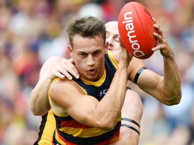 AFL 2019: Adelaide defender Tom Doedee suffers suspected ACL injury in Round 1 against Hawthorn