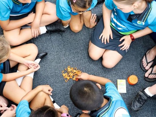 Newly installed air-conditioners in Queensland state schools unusable during heatwave
