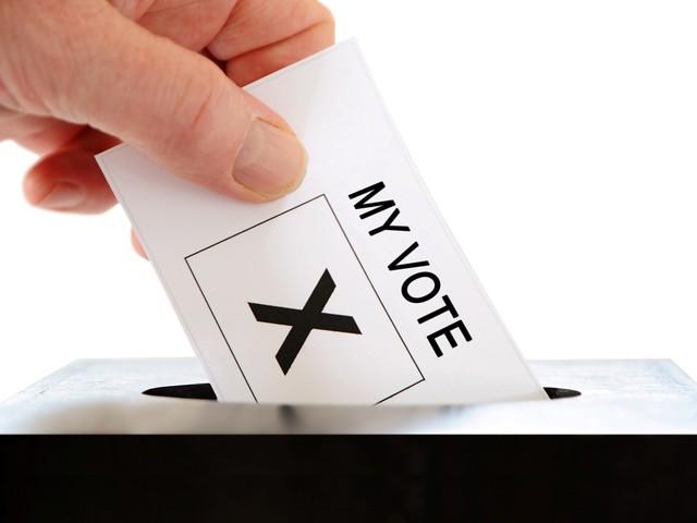 Judge Reluctantly Approves Georgia Voting Machines, Despite Hack Concern