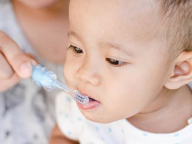Feed Play Love Highlight: Is brushing teeth enough for good dental health?