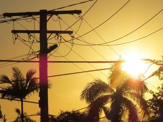 Want cheaper power bills? The Government says it can save you up to $800 a year