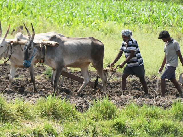 Ex civil servants support farm sector laws