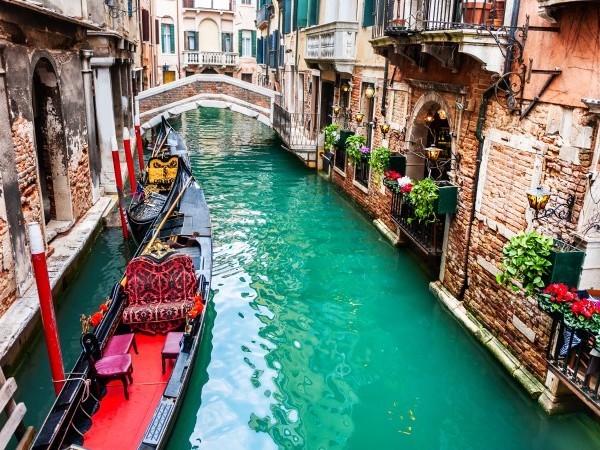 No, the dolphins haven't returned to Venice (and other news you may have missed)
