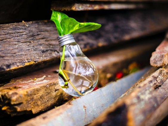 The Green Home Investments Your Property Needs