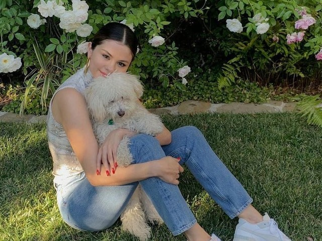 I Wish I Could Reach Through My Phone Screen to Pet Selena Gomez's Dogs, Winnie and Daisy