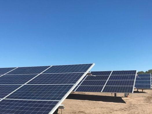 Solar industry hiring backpacker workforce, insider reveals
