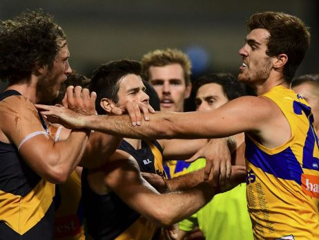 AFL season 2016: Matt Priddis likely to miss Eagles' next game