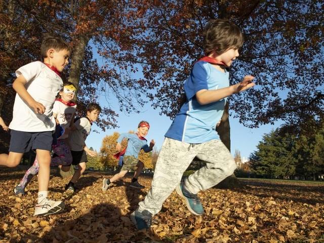 Kids will fly ahead of YMCA half-marathon