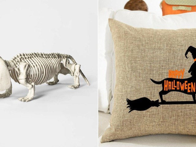 15 Spooky Halloween Decorations That Dog-Lovers Will Just Have to Buy