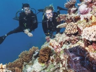Tiffany donates $1.4m to save our reef